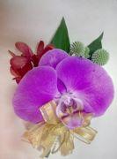 蝴蝶蘭胸花