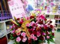 婚禮熊盆花