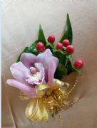 東亞蘭胸花