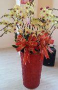 尊榮黃金蝴蝶蘭盆栽